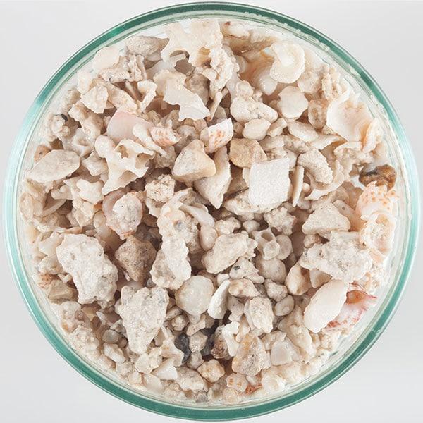 florida-crushed-coral